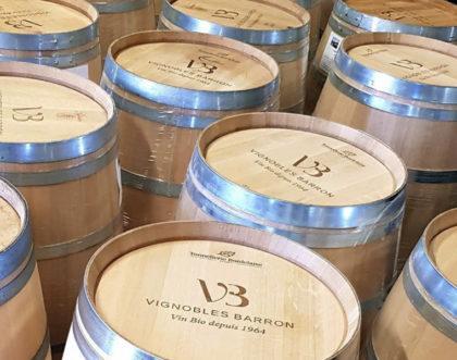 Nouvelle identité visuelle pour un viticulteur Bio